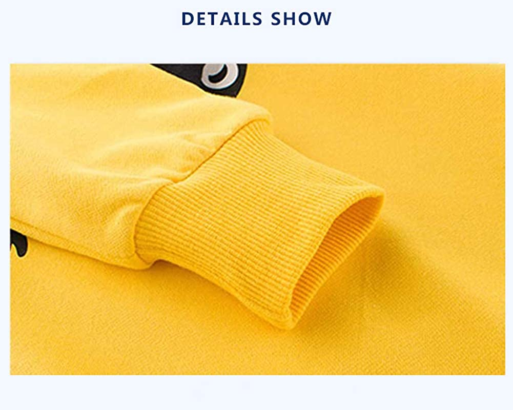 SUPFANS Boys Dinosaur Sweatshirts Pullover Long Sleeve Top Toddler T-Rex T-shirt