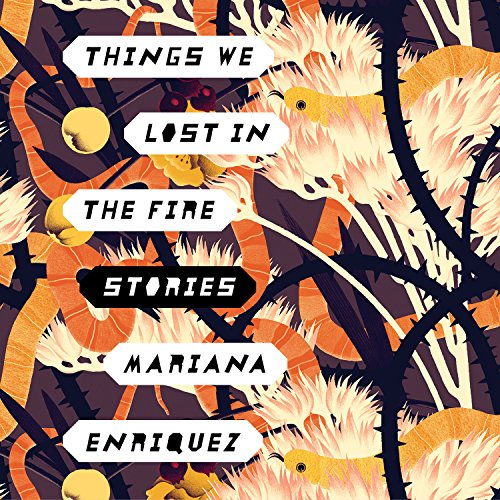 Things We Lost in the Fire audiobook cover art