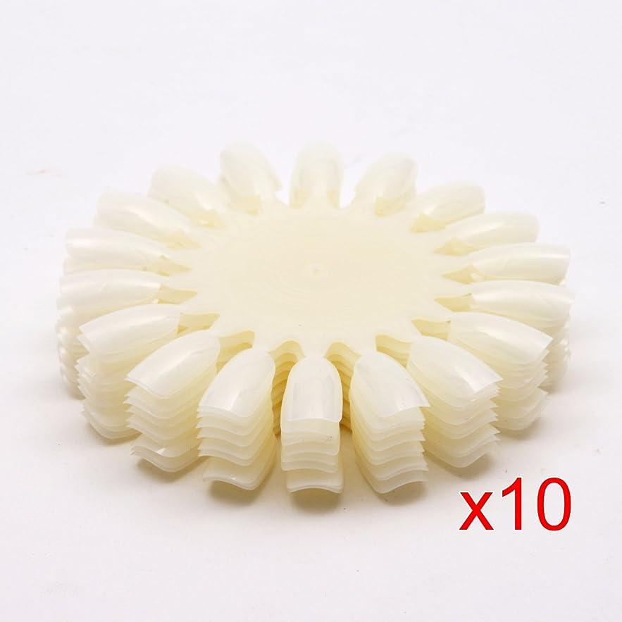 発掘遠え立法CUHAWUDBA 10 xナチュラルな白いのネイルアートホイール