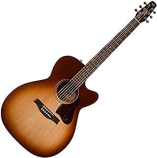 Best seagull entourage acoustic electric guitar Reviews
