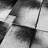 Paco Home Designer Teppich Modern Wohnzimmer Teppiche Kurzflor Meliert Grau Creme Schwarz, Grösse:60x100 cm - 3
