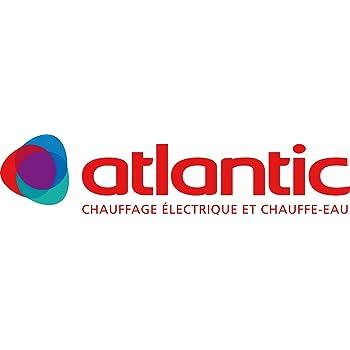 atlantic 423098 jeu de 2 filtre pour vmc altantic neo df