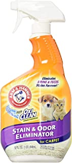Arm & Hammer Pet Stain and Odor Eliminator, 32 Ounce (Pack of 2)