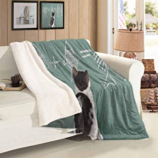 Xlcsomf Kitten Camping Blanket Cat Doing Arithmetic with Fish Problem on a Blackboard for Kitty to Solve Fishbone Comfortable and Elegant Multicolor 60 x 47 inch