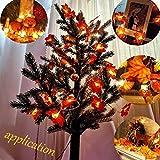 Herbst lichterkette, Ainkedin Herbst Blättergirlande,lichterkette,10 Ahornblatt Licht,Länge 1.5 Meter Benutzt für herbstdeko und weihnachtsdeko halloween deko party deko tischdeko - 3