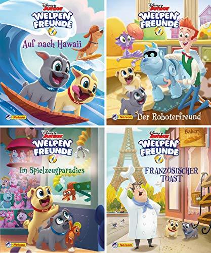 Nelson Mini-Bücher: Disney Welpenfreunde 1-4: 24 Mini-Bücher im Display