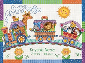 Dimensions Counted Cross Stitch Kit Baby Express Birth Record Personalized Baby Gift, 14 Count White Aida, 12