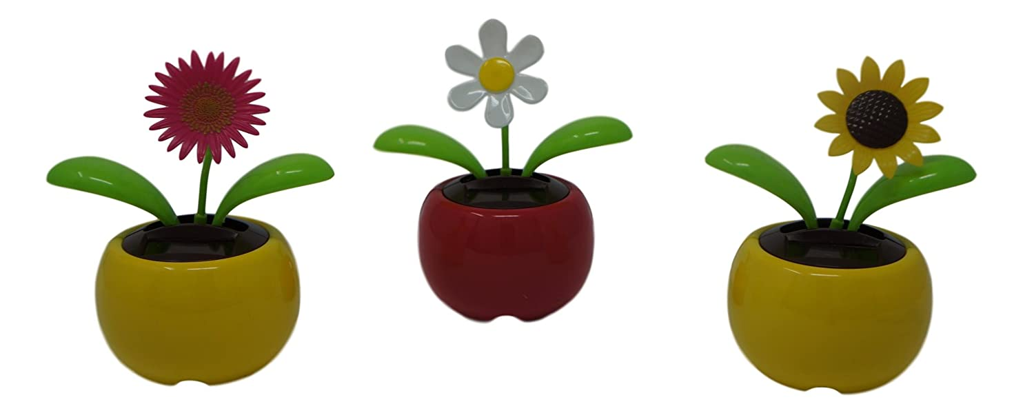 Dancing Solar Flowers - 2 Pack (Colors Vary) xbdlaffunuh24