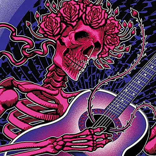 DIY 5D Diamond Painting by Number Kits,Crystal Rhinestone Embroidery Paint with Diamonds Full Drill Home Decor Skull Playing Guitar 11.8x11.8in 1 Pack by Bemall