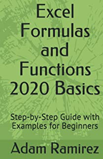 Excel Formulas and Functions 2020 Basics: Step-by-Step Guide with Examples for Beginners (Excel Academy)
