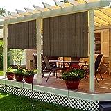 TANG Sunshades Depot Exterior Roller Shade for Deck Porch Pergola Balcony...