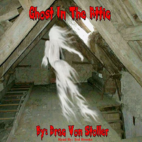 Ghost in the Attic audiobook cover art
