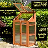Abaseen Garden Greenhouse Hardwood Coldframe, Transparent One Size Brown, 120x69x49 cm