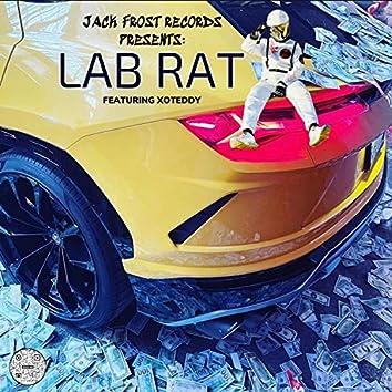 Lab Rat (feat. xoteddy)