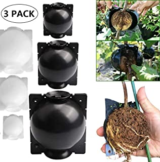 LOVER 3PC Reusable Plant Root Growing Box Grafting,High-Pressure Box Grafting Botany Root Controller Effective Asexual Reproduction (M, White)