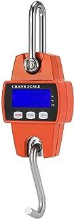 Mini Crane Scale Portable LCD Digital Electronic Hook Hanging Scale 300kg 0.1kg