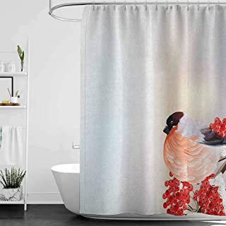Shower Curtains for Bathroom Gray and Blue Rowan,Christmas Themed Corner Composition with Bird Sitting on Wild Berry Branch, Salmon Red Brown W69 x L90,Shower Curtain for Kids