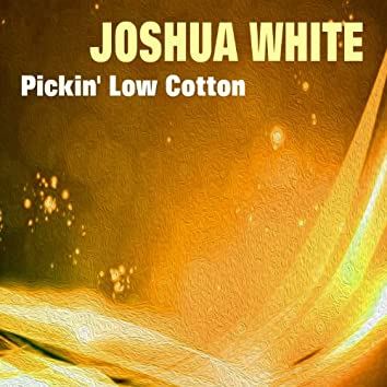 Pickin' Low Cotton