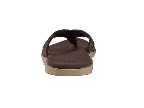 Brownchocolatedark Marrón Cojín bay J Marrón Arrecife qxTwg