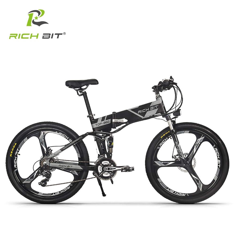 チャンバーペストリーネックレットRICH BIT 860 アシスト自転車 折り畳み フルサスペンション 26インチ 36V12.8ahリチウムバッテリー 専用充電器付け 21段速 マウンテンバイク デスクブレーキ 防犯登録可能 (グレー)