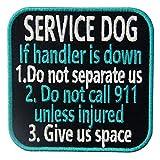 Service Dog If...image