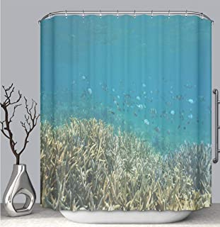 BEICICI Color Shower Curtain Liner Anti-Mildew Antibacterial, Underwater Coral Reef Sergeant Fish Pacific Ocean Multi-Color,Custom Shower Curtain Bathtub Bathroom Accessories.