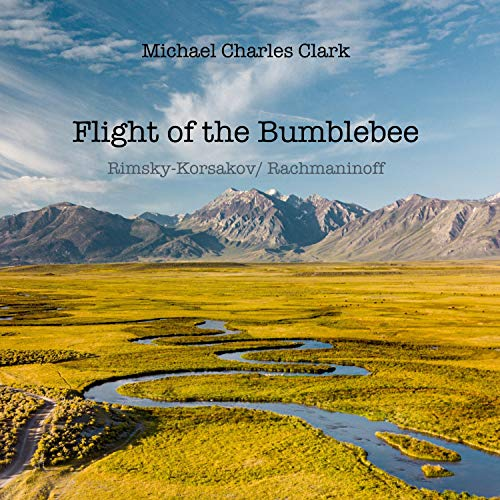 Flight of the Bumblebee (Hummelflug) Piano arrangement