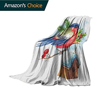 Rowan Fluffy Blanket,Merry Christmas Composition with Cute Bullfinch Holly Pine Cone Bird House in Winter Colorful Home Couch Outdoor Travel Use Blanket,30