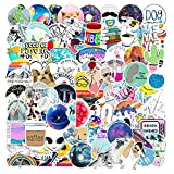 Meme Stickers| 100 PCS | Funny Stickers for Adults, Aesthetic,Skateboard,Vinyl Waterproof Stickers for Laptop,Water Bottles,Computer,Phone, (Meme 100Pcs)
