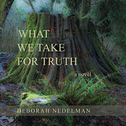 What We Take for Truth: A Novel cover art