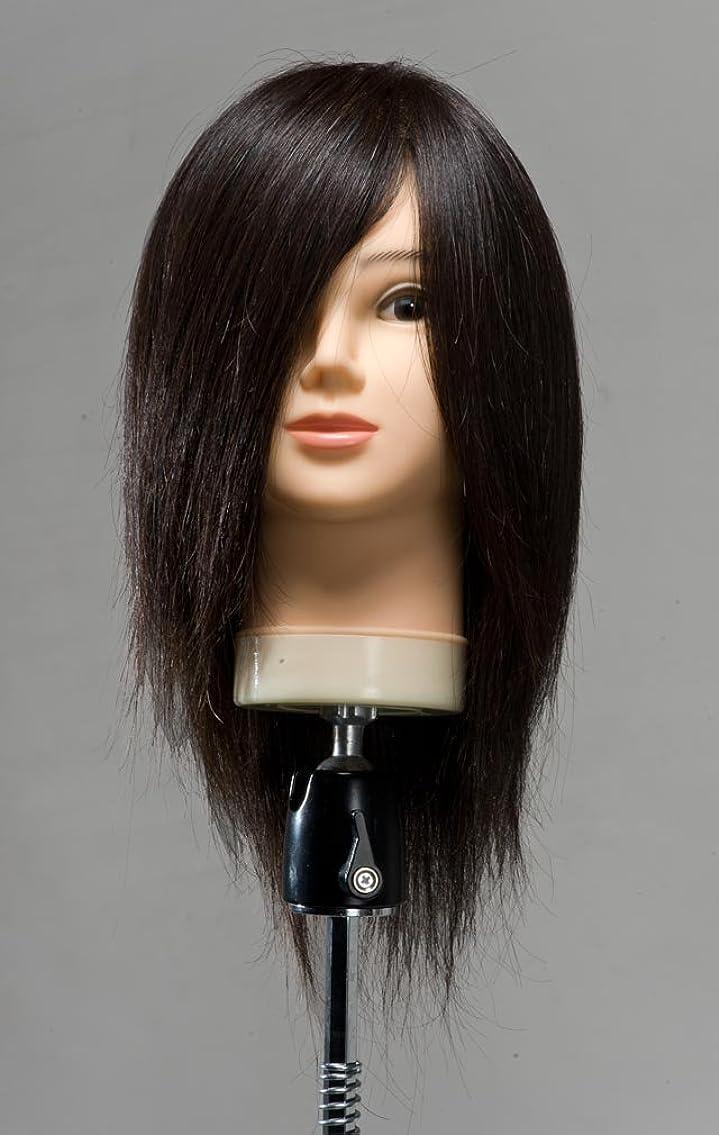 独特の美容師ベースEmilly カットウィッグ (100% 人毛)6体セット
