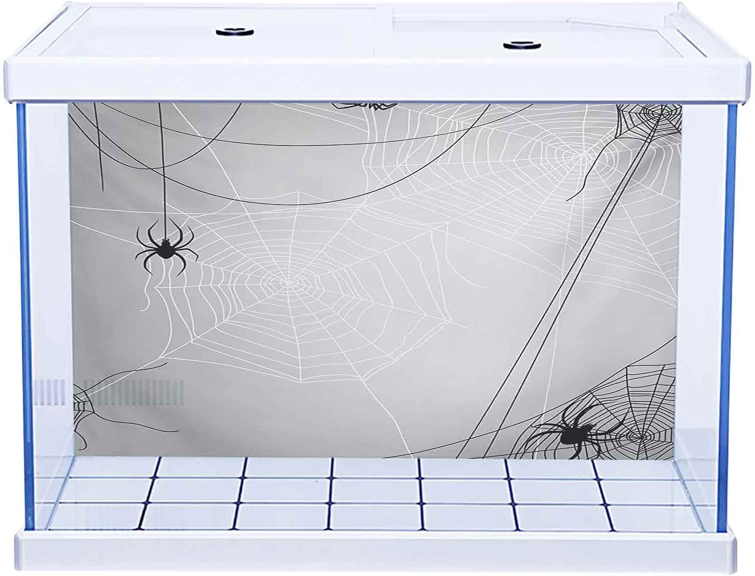 Home Aquarium Dcor Backgrounds Spider Popular products with Web ...