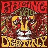 Destiny [Vinyl LP] - Raging Fyah
