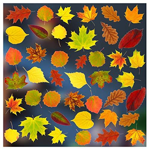 Stickers4–Herbst Dekoration–42 statisch haftende doppelseitige Fenster-Sticker – Fotorealistische Herbstdekoration Fenster