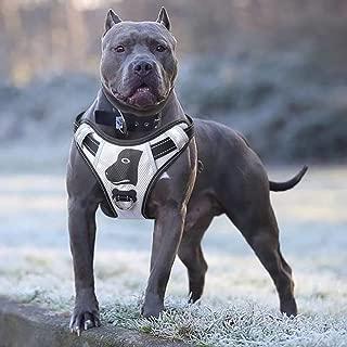 Best american pitbull terrier harness Reviews