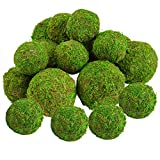 """18 Pack Decorative Faux Dried Moss Balls- 6pcs 3.1"""" Artificial Green Plant Mossy Globes+ 12pcs 2.2"""" Handmade Sphere Moss Hanging Balls for Home Garden Decors Party Wedding Display Supplies Photo Props"""