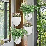 Sungmor Corner Hanging Planter