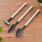 Junjiagao 3pcs / Set Mini Herramientas de jardinería de la manija de Madera de Acero Inoxidable Plantas en Maceta Pala Rastrillo Pala for la Planta en Maceta Flores