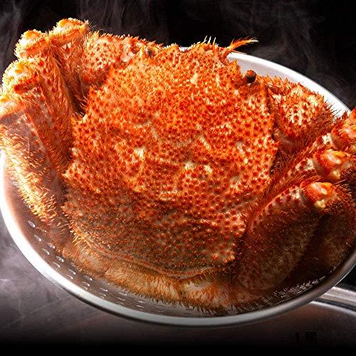 さっぽろ朝市 毛蟹 超特大 天然 毛ガニ 浜茹で 蟹 (1kg×1尾)
