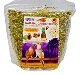 Birds LOVE All Natural Garden Blend Bird Food for Medium Birds - Cockatiels, Green Cheek Conures, Ringneck Parakeets and Small Quakers 4lb