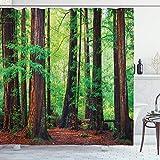 Woodland Cortina de Ducha Redwood Trees Northwest Rain Forest Tropical Scenic Wild Nature Rama Tela Tela Decoración de baño Set con Ganchos 72 Long Brown Green