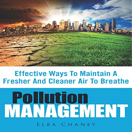 Pollution Management audiobook cover art