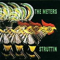 Struttin by METERS (2008-01-13)
