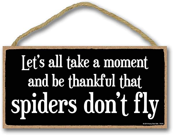 Honey Dew Gifts Funny Sign Thankful That Spiders Don T Fly 5 Inch By 10 Inch Hanging Wall Art Decorative Wood Sign Home Decor