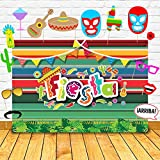 ◆FUN & ENTERTAINING: Great for Mexican fiesta themed, carnival, dress-up, summer pool party, or tropical beach parties - instantly liven up your party setting. Let your guests get creative! ◆SIZE - 5 x 6.6 ft Large size design fiesta photography back...