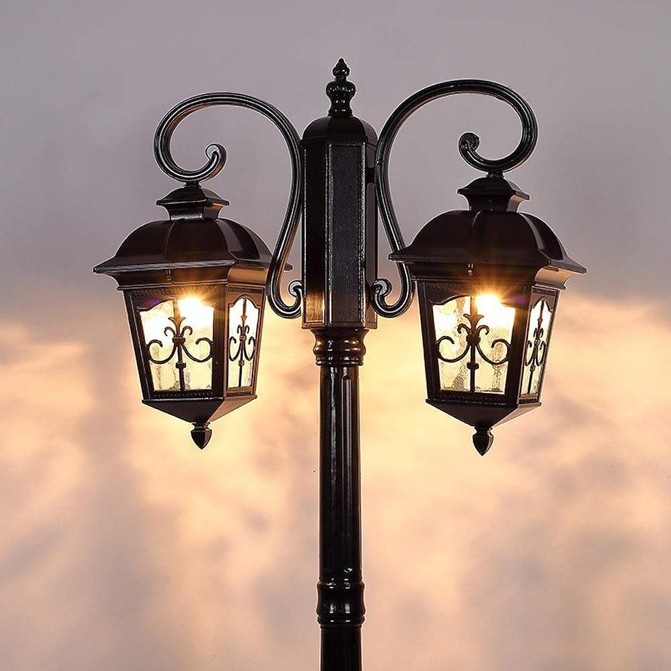 破滅的な多様な磁器Jblyl アメリカの2灯の高ポールランプビクトリアエクステリア風景防水パティオパス照明ポストランプダブルコラムポールライト街灯 (Color : Black, サイズ : H:2.95M)
