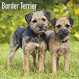 Border Terrier 2022 - 16-Monatskalender: Original Avonside-Kalender [Mehrsprachig] [Kalender] (Wall-Kalender)