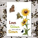 Set of 25 Sunflower Seed Packet Favors (F06) Love is Grown Great for Weddings (Autumn Beauty Sunflower Seeds)