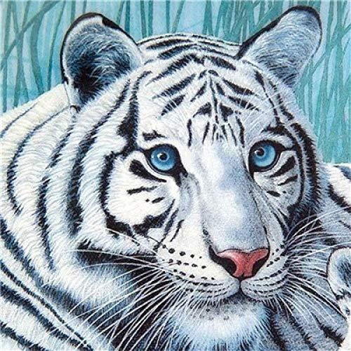 Diy diamante bordado animal tigre perforación completa tigre diamante bordado punto de cruz regalo de vacaciones @ white_65x65cm