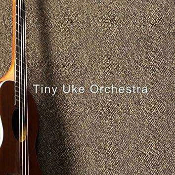 Tiny Uke Orchestra
